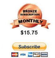 Bronze Subscription - 30 Days